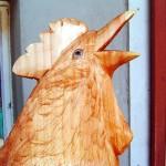 10-Huhn